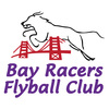 Bay Racers Flyball Club